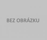 Číslovaný blok Lekársky predpis na cezhraničnú zdravotnú starostlivosť (lepený)